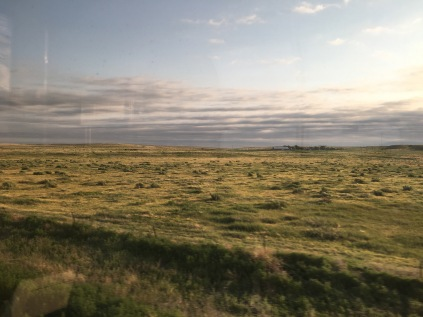The yellow and green grasses of the Midwest.