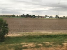 Lots of farmland, no surprise.