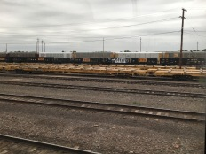 Freight trains like the many we saw in Arizona.