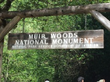 The entrance to Muir Woods.
