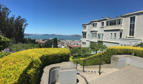 A view down the steps of one of the wealthiest neighborhoods in San Francisco.