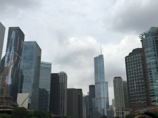 A view of Chicago's fascinating architecture from our Architecture River Cruise.