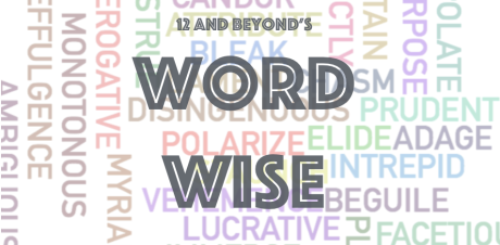 New Word Wise Logo
